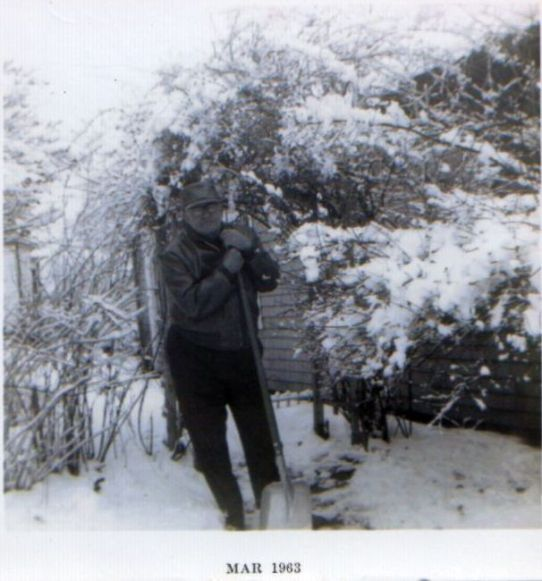 Lionel in snow II